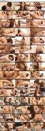 7m1f8bzm48ol t [AVI 0.97GB][SERO 0087] 友田彩也香 – すぐに破れるコンドーム×友田彩也香
